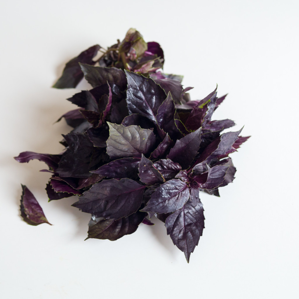 leaves  basil