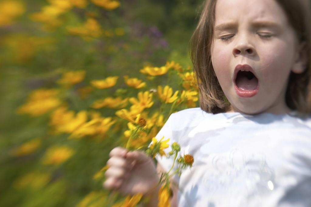The diagnostics of the children's allergy